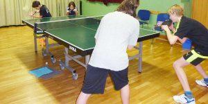 LSV - Lehrer-Sport-Verein Tischtennis | Kindertraining macht allen Spaß (c) Werner Gschanes